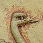 Concrete Ostrich Wall Relief Sculpture
